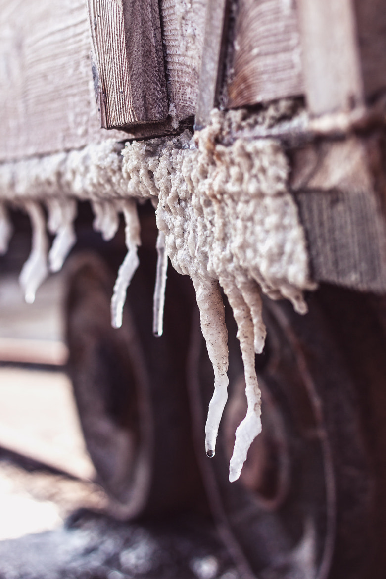 Photograph Stalactites of Salt by Andrea Scotto on 500px