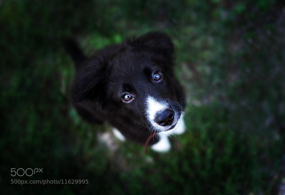 Photograph my baby boy by Елена Серебрякова on 500px