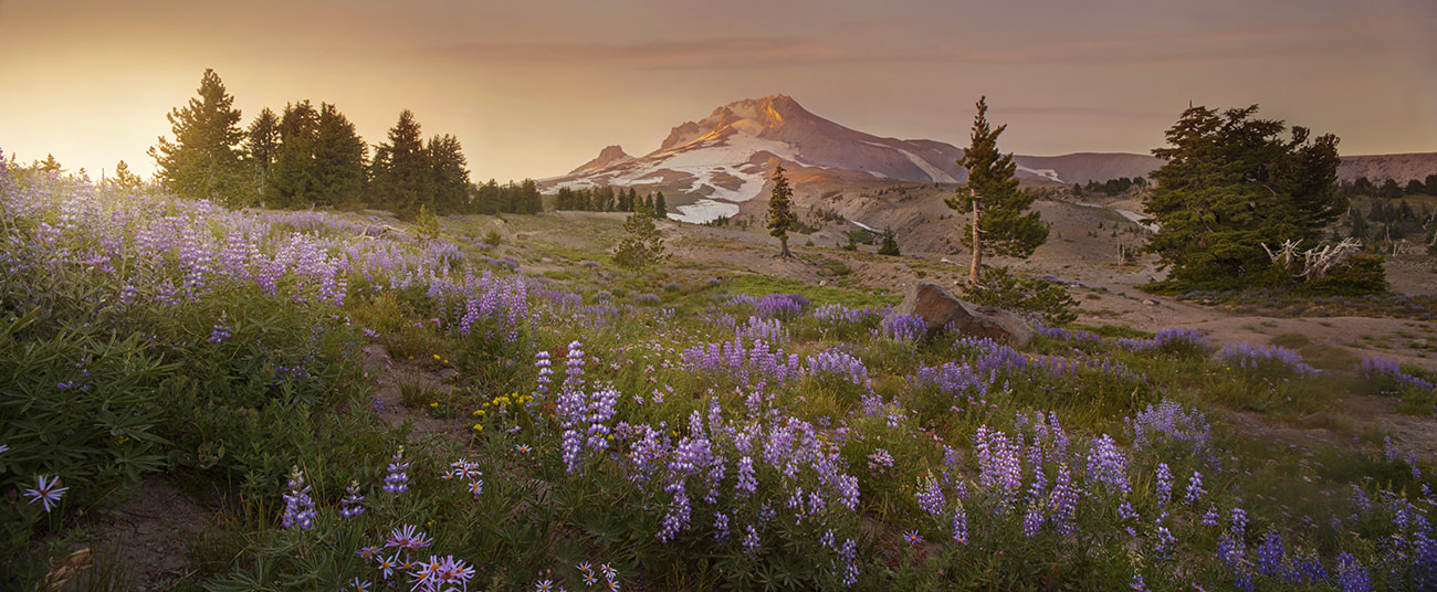 Photograph Heaven Song by Lijah Hanley on 500px