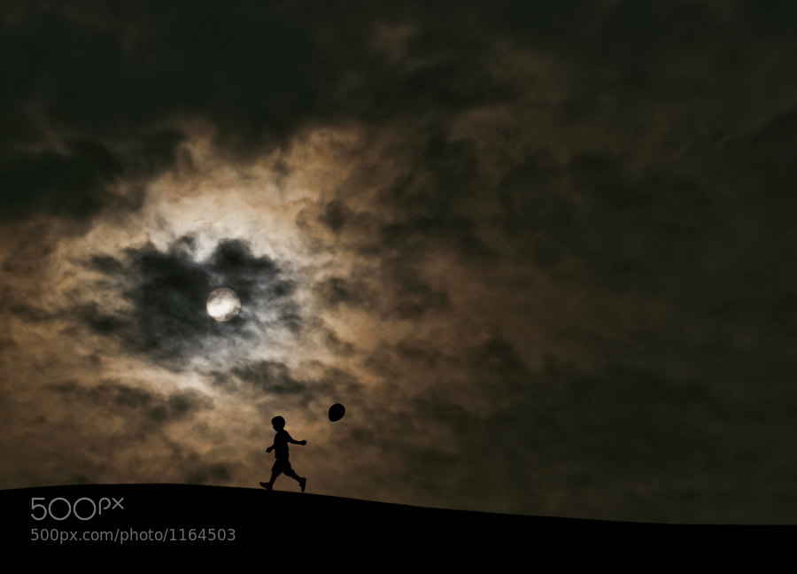 Photograph The Pursuit of Happiness by Hengki Lee on 500px