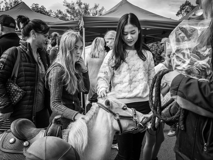 Photograph Frenchs Forest Market, Sydney Australia by Travis Chau on 500px