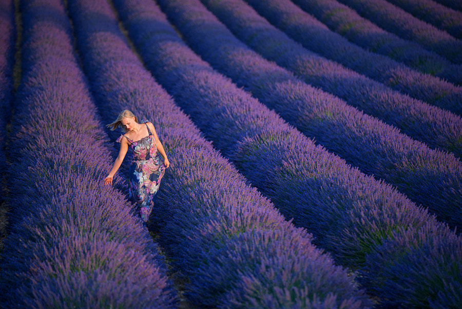 Lavender Dreams by Vadim Balakin on 500px.com