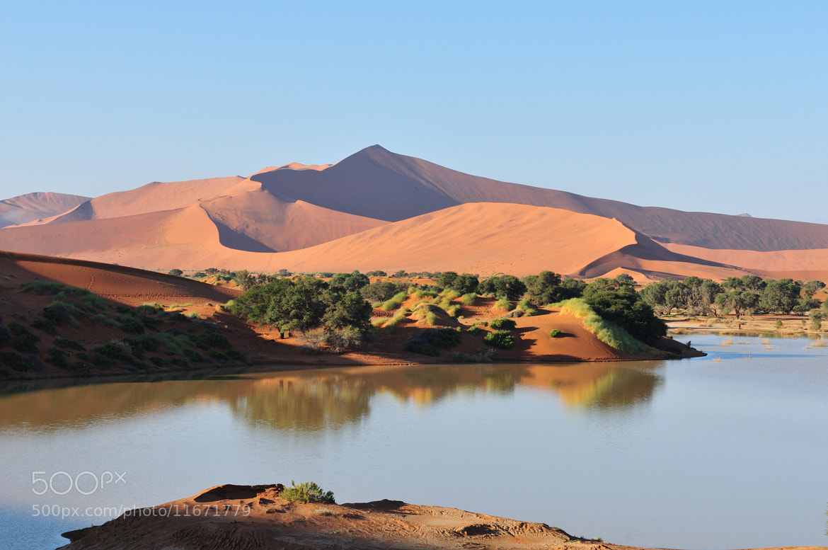 Photograph A flooded Sossusvlei in the Namib Desert  by Grobler du Preez on 500px