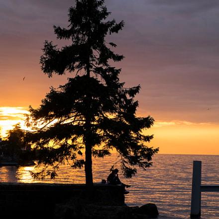 Lone Pine Sunset
