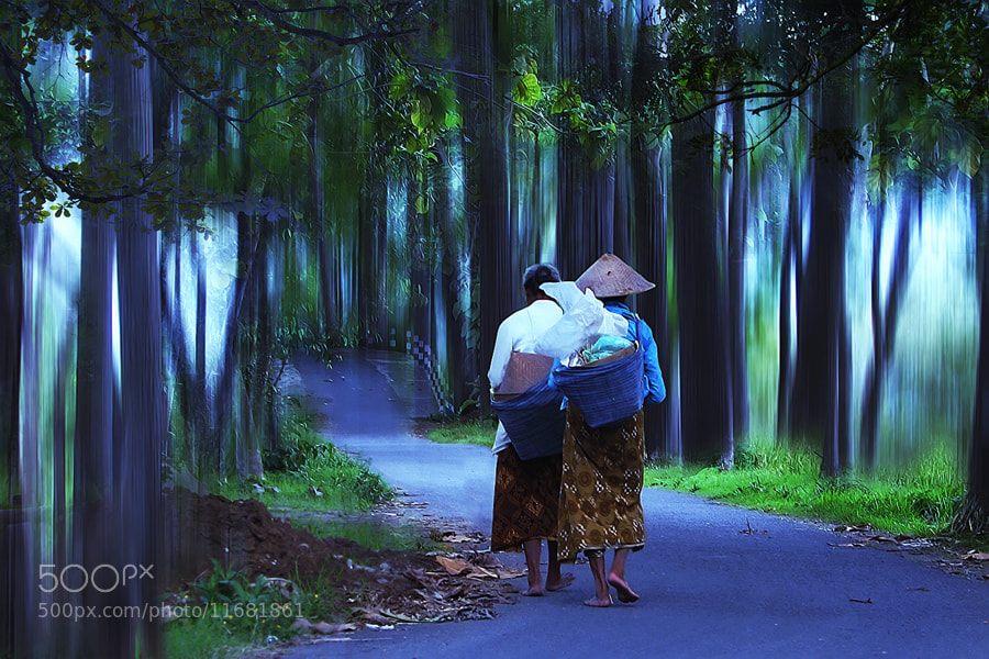 Photograph In the Morning by 3 Joko on 500px