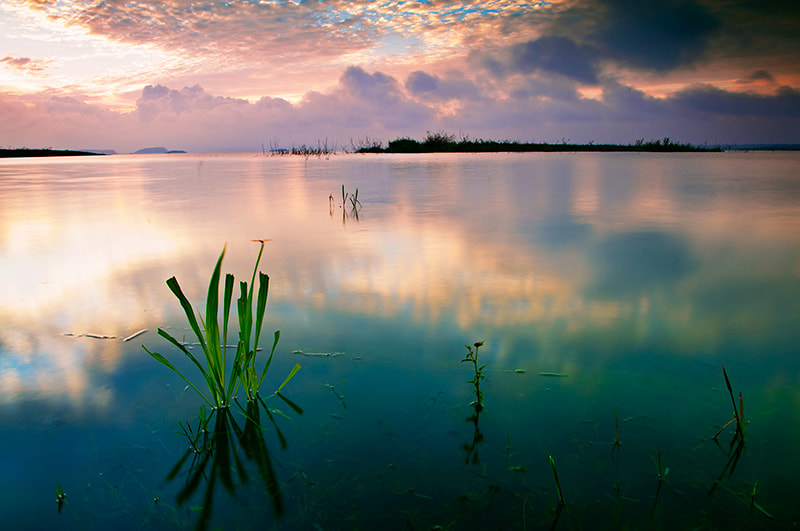 Photograph Tri An lake In the early morning by Tana Tran on 500px
