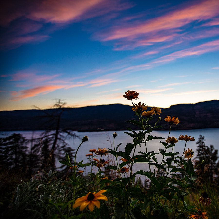 Okanagan Sunset by John Entwistle on 500px.com