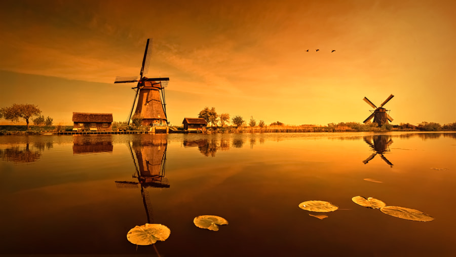 kinderdijk windmill by Robert Karo