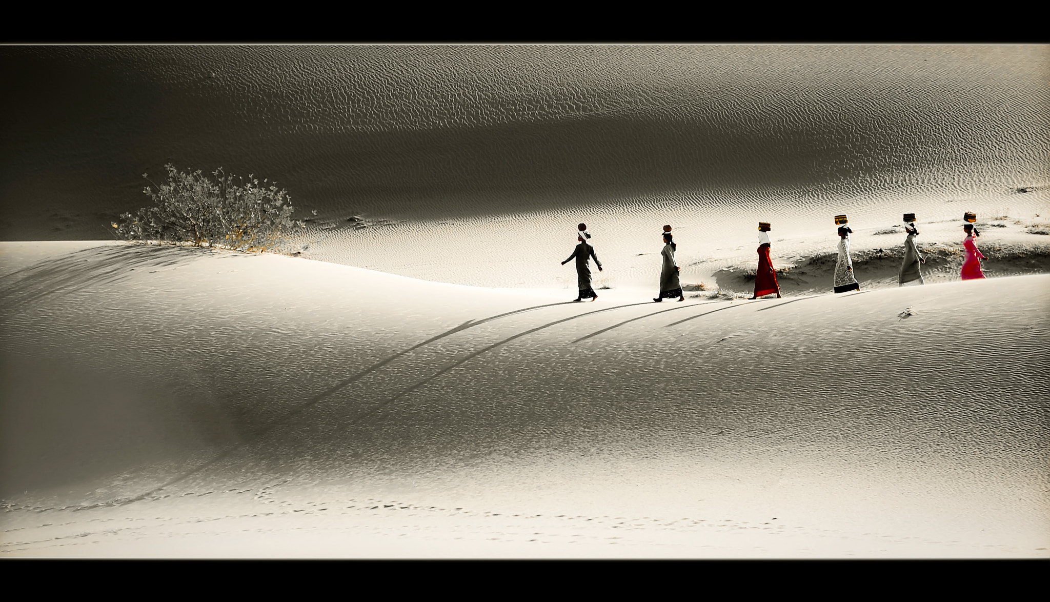Photograph Sand hill by Vu Le on 500px