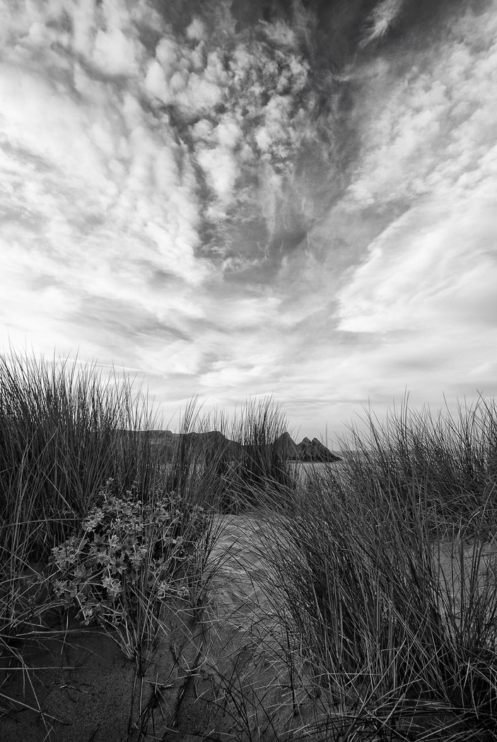 Photograph Dunes in Mono by Gary Howells on 500px