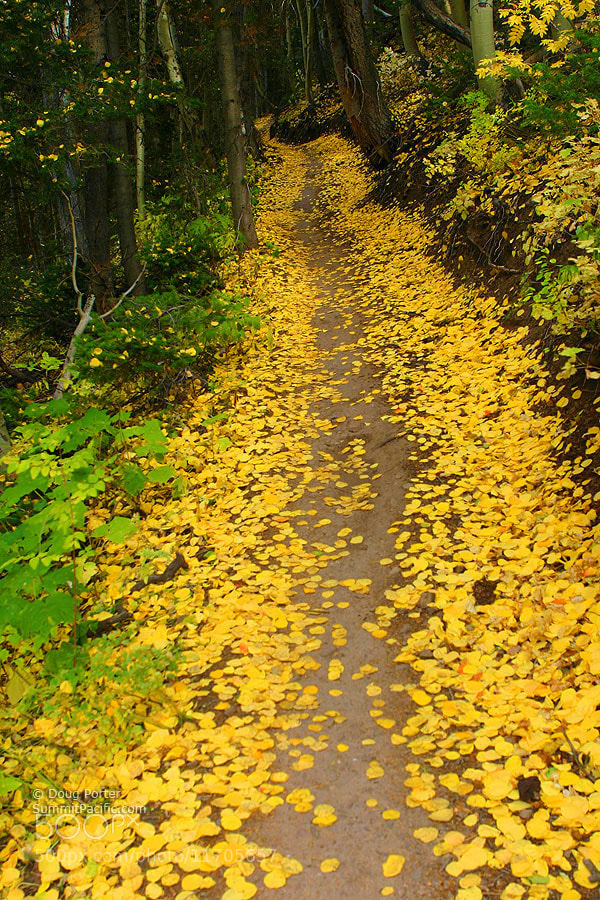 Photograph Mountain Trail by Doug Porter on 500px