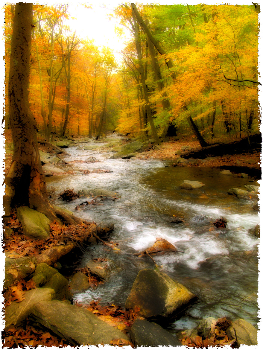 Photograph Catoctin Creek by Randall Hull on 500px