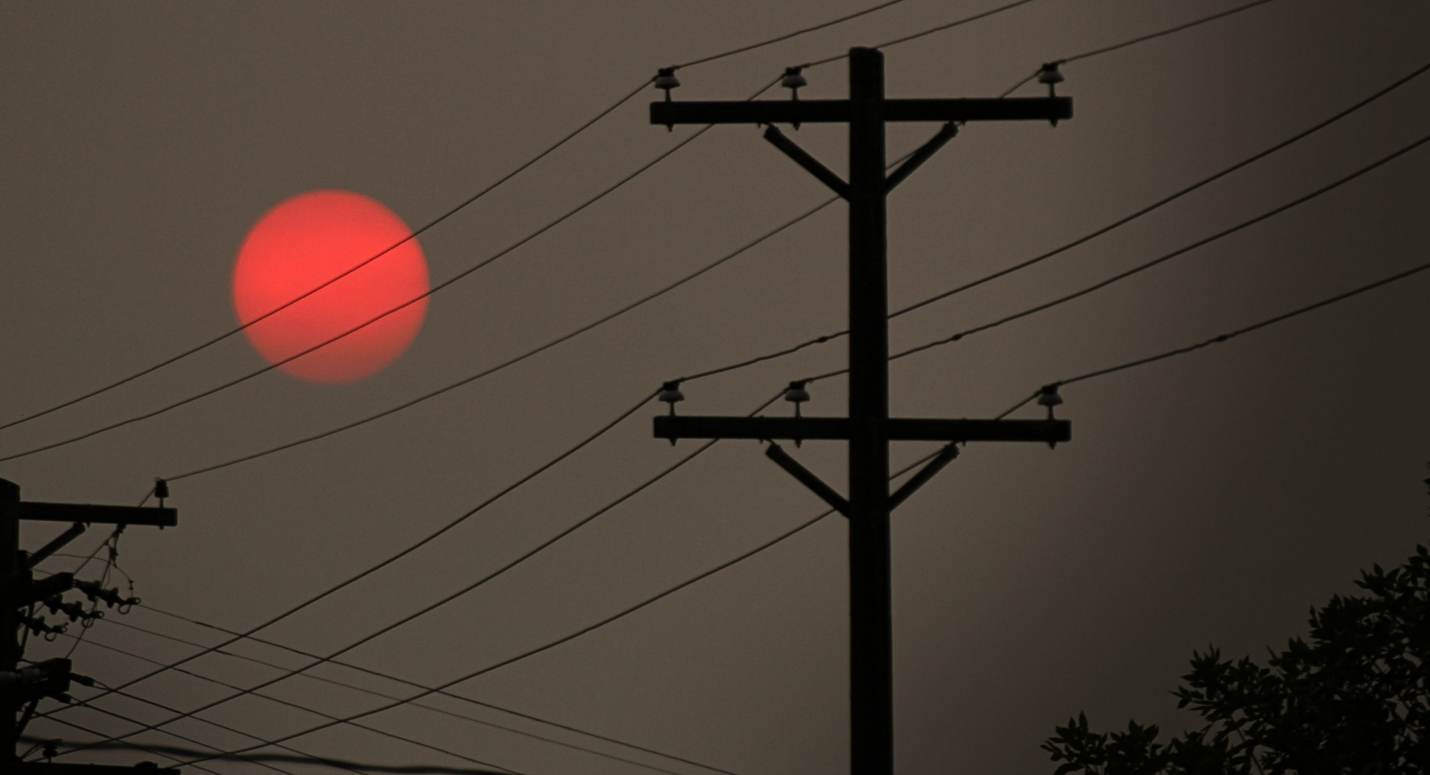 Photograph pink sun by Johnny Gomez on 500px