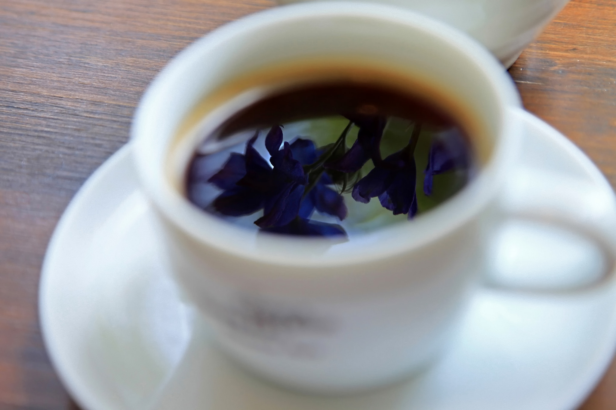 Photograph Coffee break~♪ by yume . on 500px