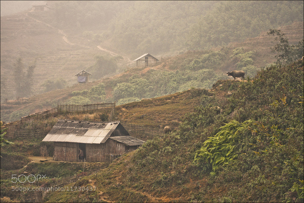 Photograph Early Morning in Sapa by Sylvain Perenes on 500px