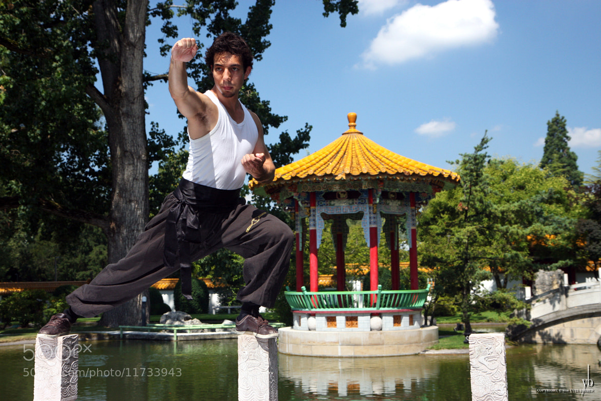 Photograph Kung Fu II by y b on 500px