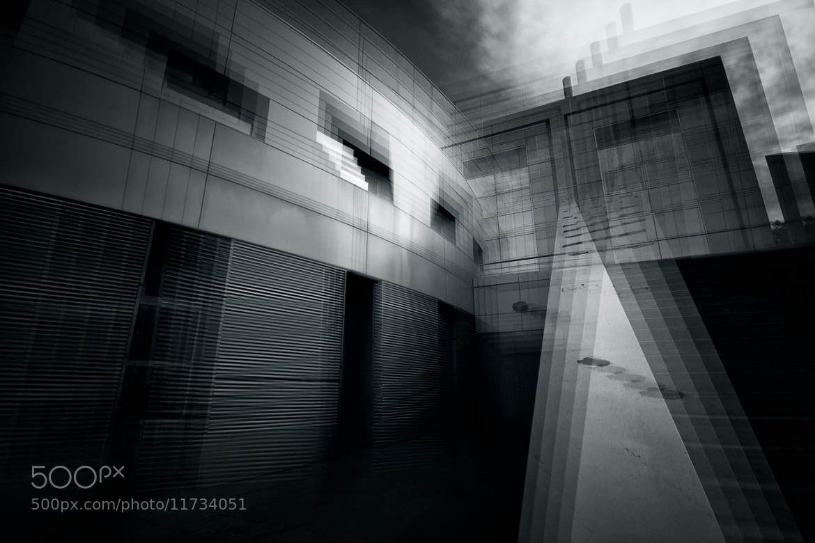 Photograph Shaking by François Cailleret on 500px