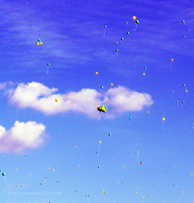 Photograph Higher 'n Higher by Dasha Nasibova on 500px
