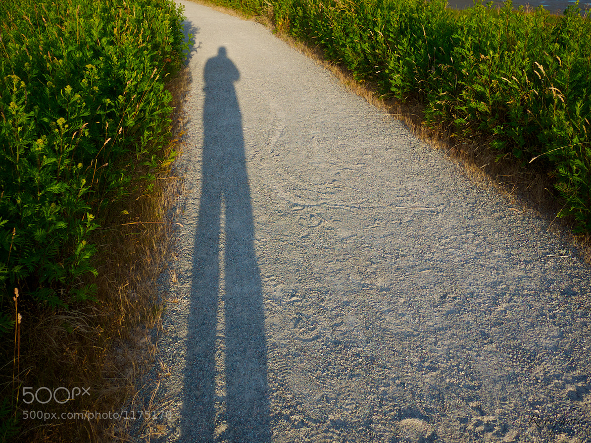 Photograph A Giant's Shadow by Robert Disney on 500px