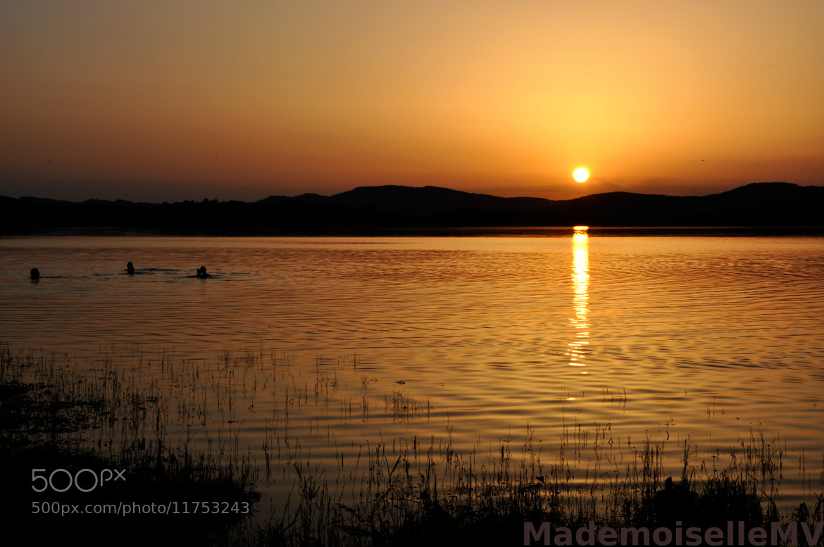 Photograph Swimming in the sunset by Mademoiselle MV on 500px