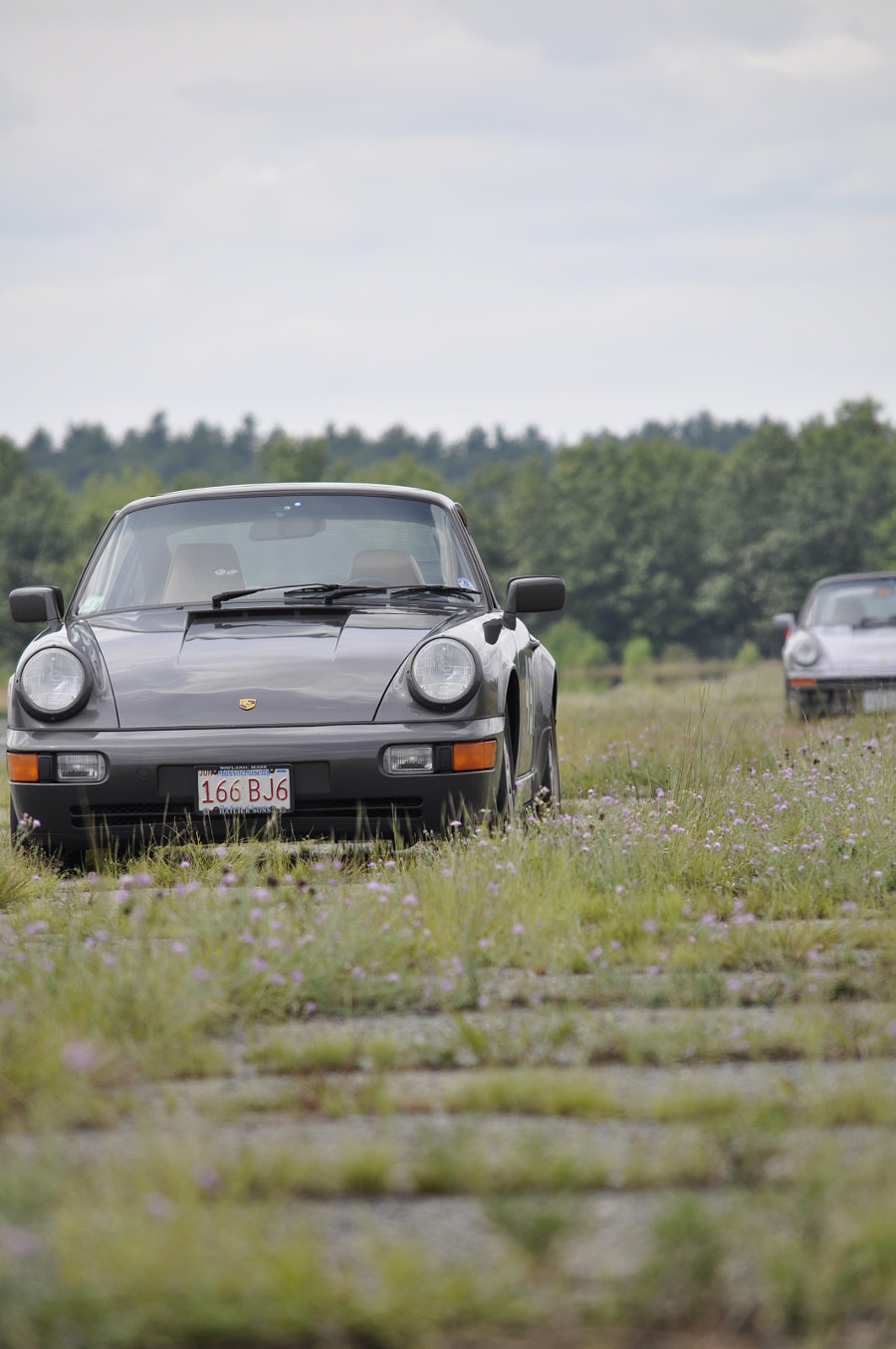 911s in the wild