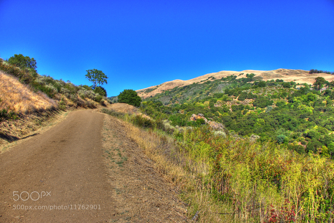 Photograph Uphill Sunny by Jherell Rabanal on 500px