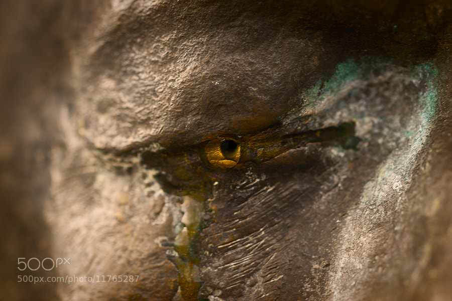 Photograph Eye of the Crying Stoneman by Magnus Larsson on 500px
