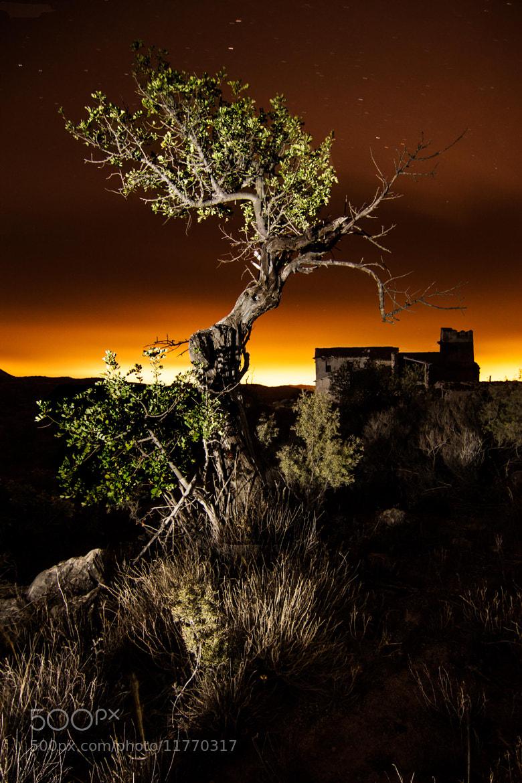 Photograph Noche de brujas by Juan A. Viudez Lucio on 500px