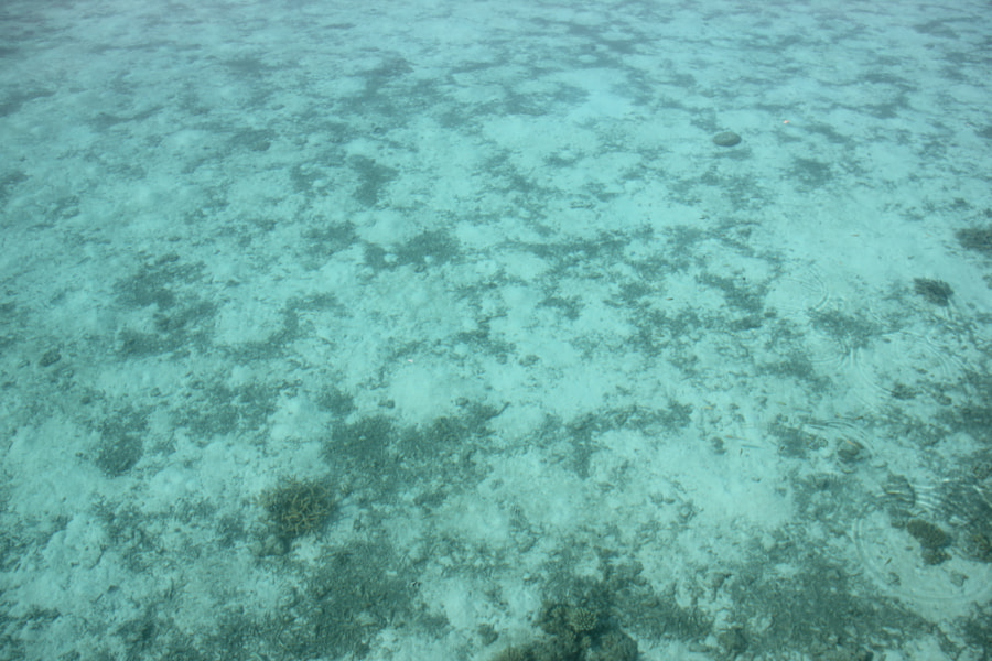 A windless day at the Maldives, with an fantastic view to the sea bottom. It's 2-2,5m deep there.