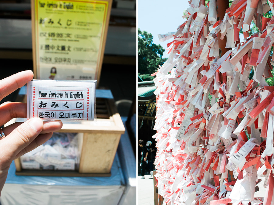 At the main shrine, drop 200 yen and pick your fortune.