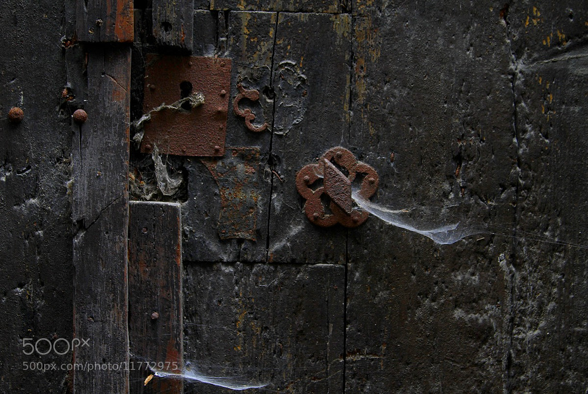 Photograph Closed by Sylvie Houtmann on 500px