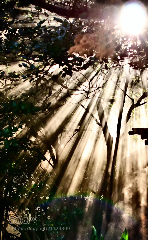 Photograph smokestack by Eddy Alvarez on 500px
