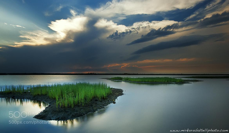 Photograph Green by Mirko Rubaltelli on 500px