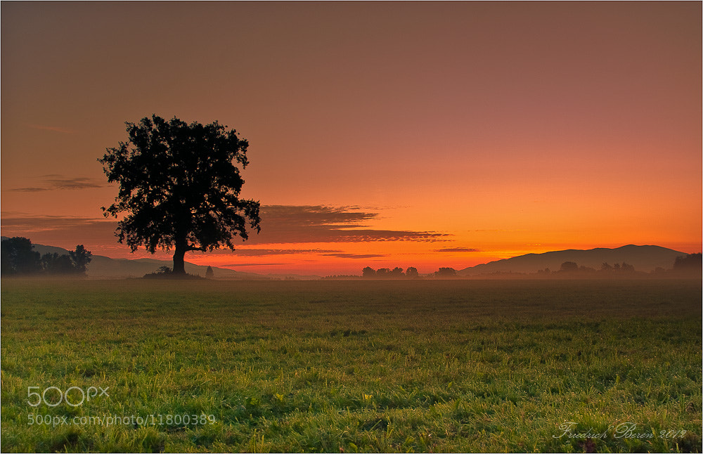 Photograph Morgenstimmung by Friedrich Beren on 500px