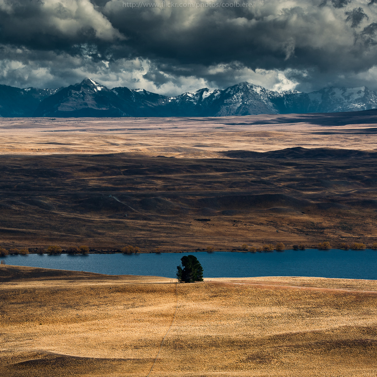 Photograph Mr.Lonely by Coolbiere. A. on 500px