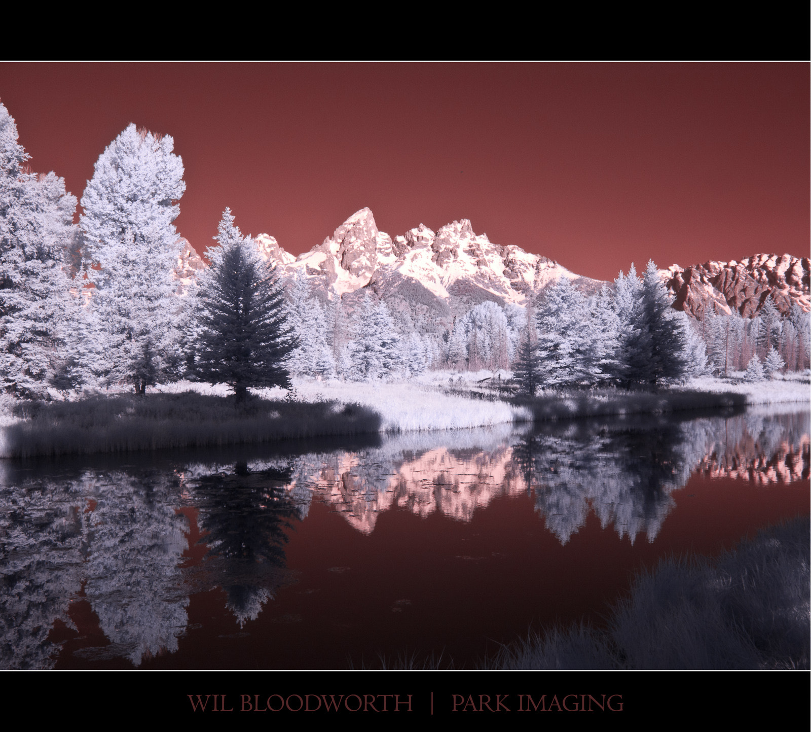 Photograph Schwabacher Landing - Infrared G9 by Wil Bloodworth on 500px