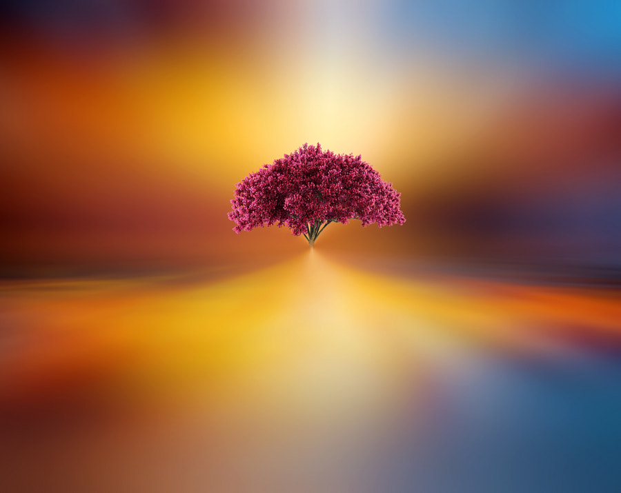 Photograph Terraforming by Josep Sumalla on 500px