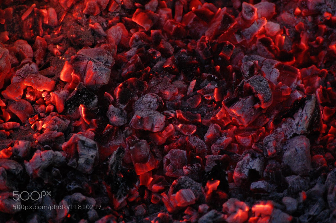 Photograph live coals by Petya Georgieva on 500px