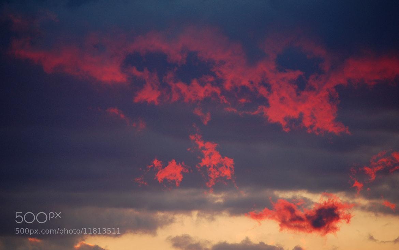 Photograph Fire in the sky by Petya Georgieva on 500px