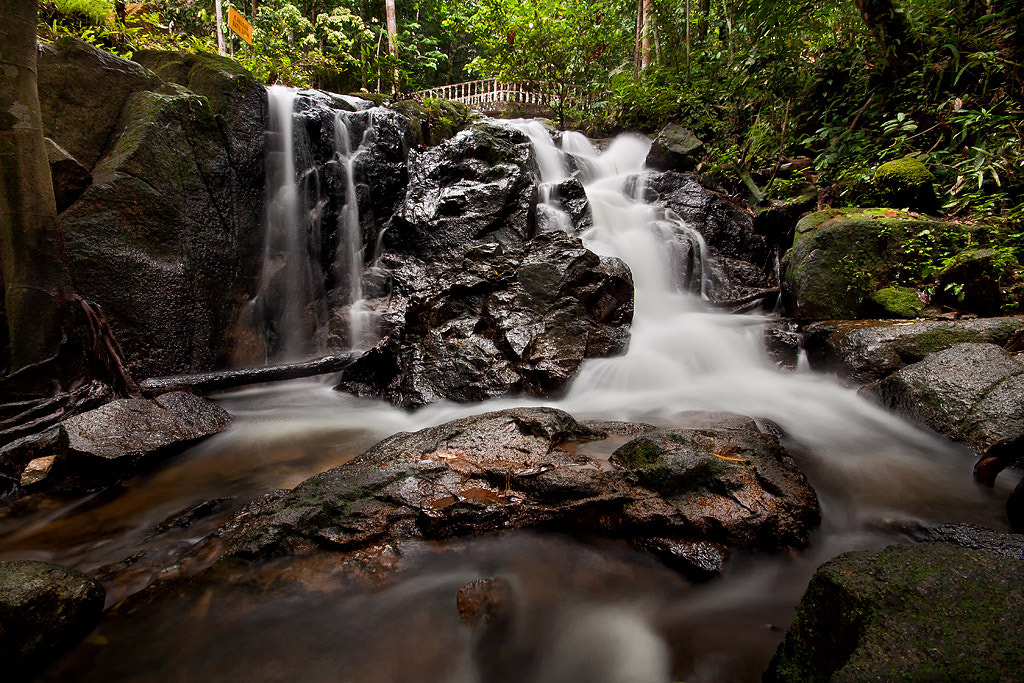 Photograph Feel the nature by aku madie on 500px