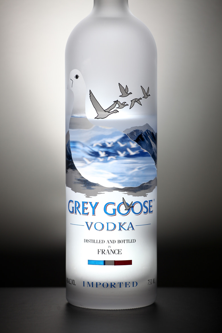 Photograph Grey Goose by Julion Bush on 500px
