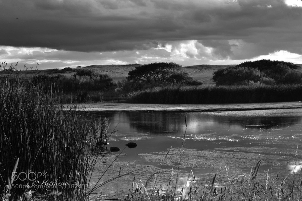 Photograph monochrome reflections by Sarah johnson on 500px