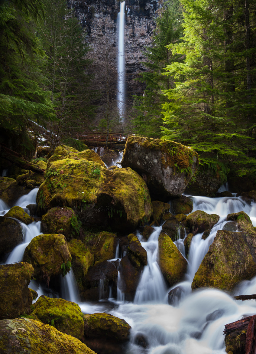 Photograph Watson Falls (Always Wanting What I Can't Have) by Eric Leslie on 500px