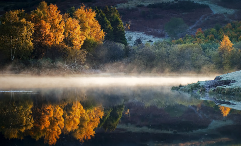 Photograph Knapps Loch Autumn light by David Mould on 500px