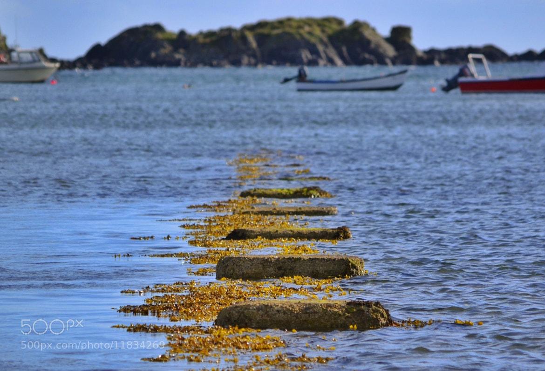 Photograph Isle of Islay by Sarah johnson on 500px