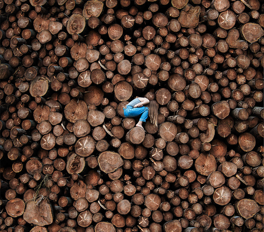 Deforestation by Amelie Satzger on 500px.com