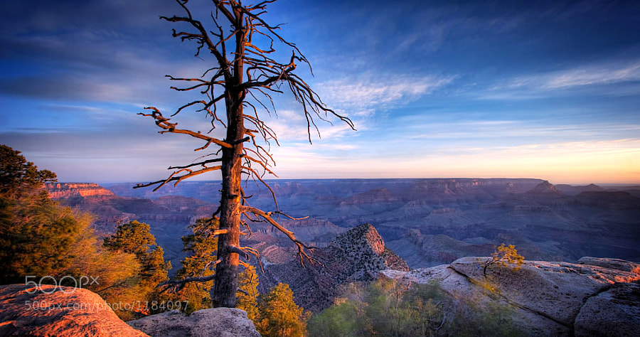 Photograph East Rim Morning by Kevin Hughes on 500px