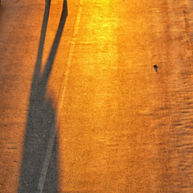 My shadow is sweating blood.. by Mahmut Islam (Mislam)) on 500px.com