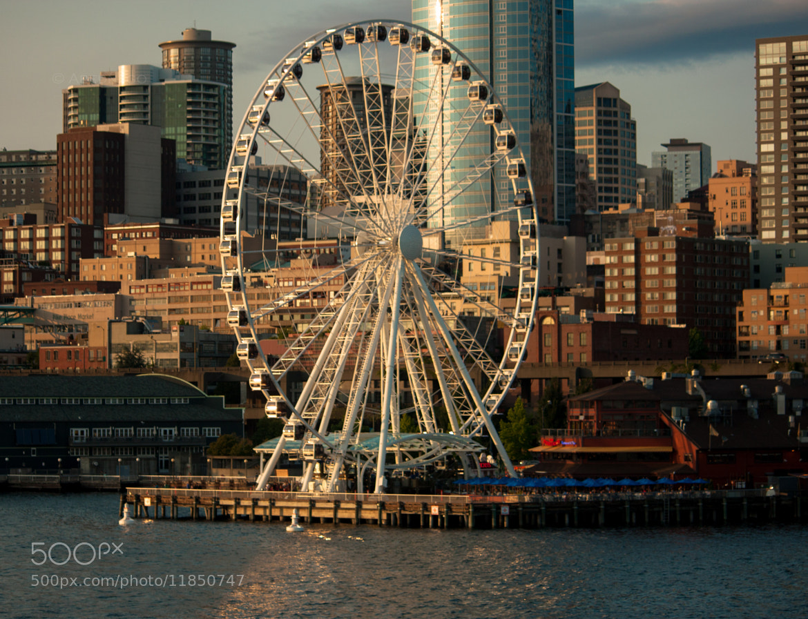 Photograph ~Seattle~ by Arlene  Siegelman on 500px