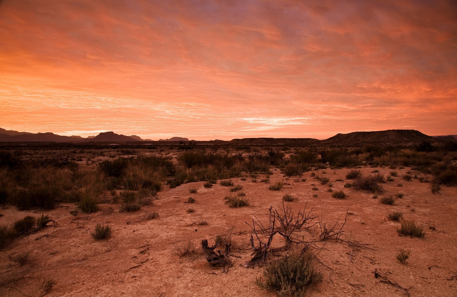Photograph Texas Desert Sunrise by Stanford  Moore on 500px
